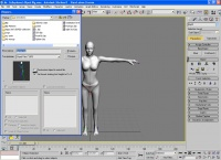 Animation tutorial by Seph image 4.jpg
