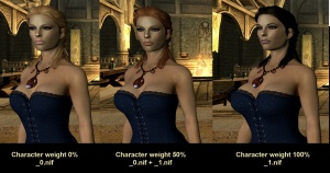 Converting an armour to another body for Skyrim - Nexus Mods Wiki
